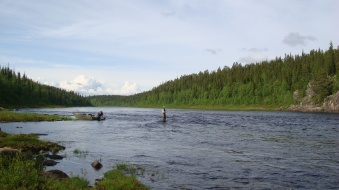 fishing the top of bear rapid on the tip of pondostrov - varzuga